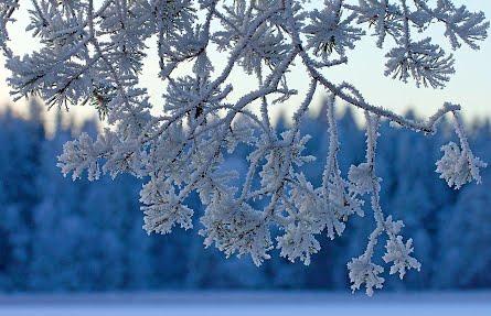 Tietokoneen talvi taustakuva, talvi-ilta