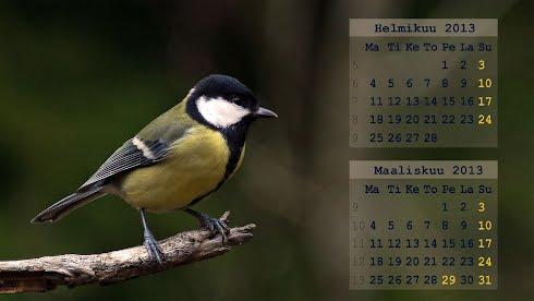 Taustakuvat, kalenteri Helmi- maaliskuu 2013