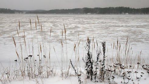 Taustakuva, Kytäjärvi jäätyy