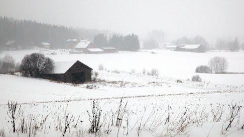 Taustakuvassa lumimyrsky