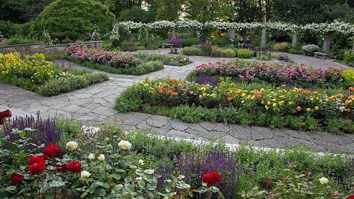 Visbyn kasvitieteellinen puutarha, heinäkuu 2015
